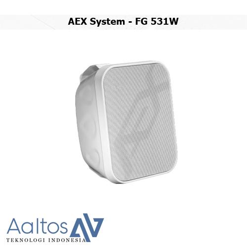 AEX System - FG 531W
